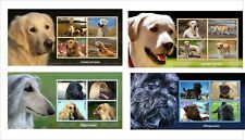 DOGS  GOLDEN RETRIEVER AFGAN HOUND 4 SOUVENIR SHEETS  MNH IMPERFORATED labrador
