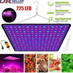 LED Plants Grow Light 225 LED for Indoor Plant Growing Lamp Full Spectrum Lights
