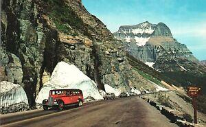 Vintage Postcard Park Sight Seeing Bus Glacier National Park Montana