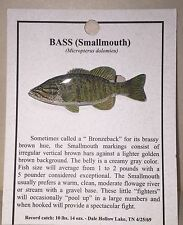 Smallmouth Bass Fish Hat Pin Lapel Pins