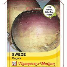 Thompson & Morgan-Hortalizas-sueco magres - 1000 Semillas