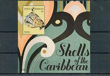Antigua e Barbuda 2011 MNH gusci dei Caraibi IV S / S II Conchiglie di Mare KING'S CASCO