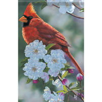 "Springtime Cardinal House Flag  28"" x 40"" Double sided Flag by Carson"