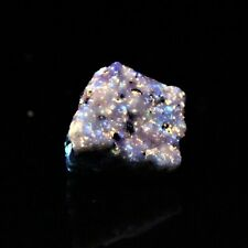 3 COLOR FLUORESCENT < EXCELLENT!! > from the FARBER QUARRY, FRANKLIN, N.J.