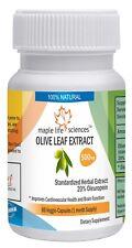 Olive Leaf Extract Capsules 20% Oleuropein Antioxidant Improve Immune system