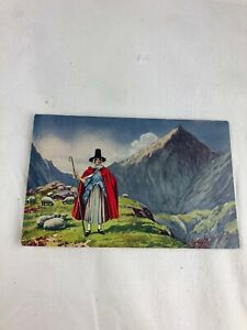 VINTAGE POSTCARD - WELSH LADY WITH SHEEP & MOUNTAIN RANGE