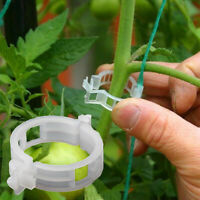 100PC Trellis Tomato Clips Supports Connects Plants Vines Trellis Twine Cages