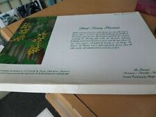 12 Floral Placemats, Vtg in original box. Plastic, Washable, Reversible 2 each