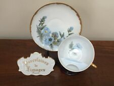 Antique Hand-Painted Morning Glory Mustache Cup & Saucer Set c.1891