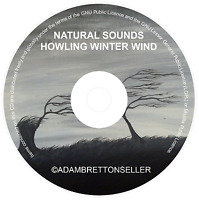 HOWLING WINTER WIND CD - RELAXATION STRESS SLEEP AID CALM NATURE NATURAL SOUNDS