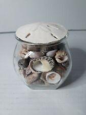 Glass Jar Of Shells With Sand Dollar Lid