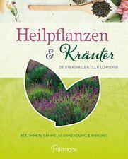 Heilpflanzen & Kräuter Bestimmen, Sammeln, Anwendung und Wirkung BUCH NEU