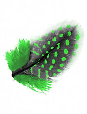 Guinea Fowl Feather Acrylic Nail Art Design Craft Nails Choice of 7 Pink Blue