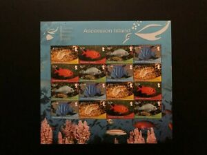 ASCENSION 2013 FISH , Sc 1103 , MNH SHEET, Stamps Without White Frame  , Cv $44