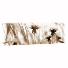 Deko-Bilder & -Drucke für die Blumen & gare Abstrakt Bild