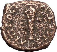 SEPTIMIUS SEVERUS Nicopolis ad Istrum Ancient Roman Coin Club of Hercules i47832