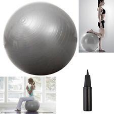 "Yoga Ball 25"" 65cm Exercise Gymnastic Fitness Pilates Balance w/Air Pump Silver"