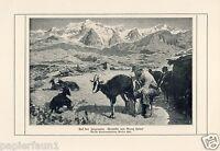 Auf der Ziegenalm Kunstdruck 1921 Georg Hänel Ziege Alm Alp Bauer Berge Almöhi