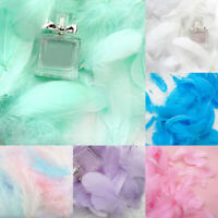 100Pcs Color Feathers Bouquet Gift Box Filling Packing Decor Art DIY Craft Soft