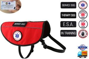 Service Dog - Support Dog - Therapy Dog Harness K9 Pocket Vest ALL ACCESS CANINE