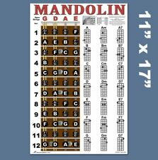 Instructional Poster for Basic Mandolin Fretboard and Chord Chart 11 X 17 Inch