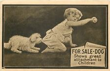 For Sale: Dog~Shows Great Attachment to Children~White Puppy Tugging Pants~1910