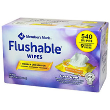 Member's Mark Flushable Wipes 9 pk., 60 wipes per pk.