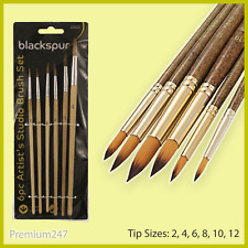 6pc Artists Studio Paint Brush Set Pointed Round Fine Spotting Retouching Art