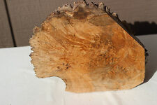 "Maple burl cap  3"" X 8"" X 10"" Natural figured burl top artwork woodcraft"