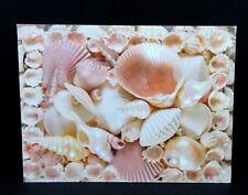 Seashell Thank You Greeting Card Sea Shell Leanin Tree New