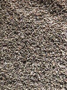Ajwain, Ajmo, Carom Seeds 100g - 1Kg