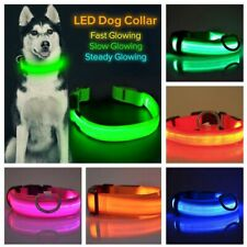 Adjustable LED Dog Neck Collar Nylon Glow Flashing Light Up Safety Pet Collars