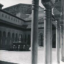 GRENADE c. 1950 - Palais Nasrides Cour des Lions Alhambra Espagne - Div 11848