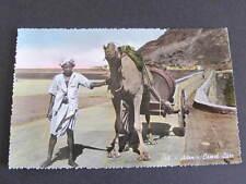 Aden Camel Cart RPPC Postcard