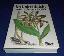 Orchideentafeln aus Curtis's Botanical Magazine