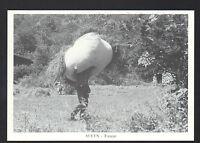 AULUS (09) AGRICULTEUR / FENAISON en 1987
