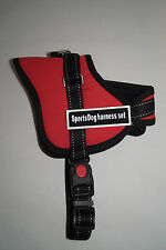 New listing Didog(Tm) Multipurpose Sports Soft Inner Padded Dog Pulling Harness, Small, Red