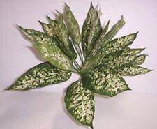 Artificial flowers & plants silk Dieffenbachia  P23