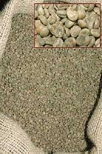 5 LBS. KENYA  (AA) FANCY GREEN COFFEE BEANS