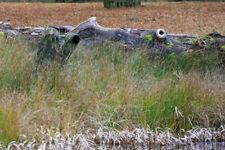 Lumière Portable Sac Caché Faune Oiseau Observation Photographie Objectif Camo