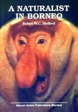 A Naturalist in Borneo - Robert WC Shelford