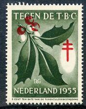 NEDERLAND / STAMP / TIMBRE VIGNETTE TUBERCULOSE / TEGEN DE T.B.C. 1955