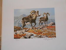 NAWS3 - North American Wild Sheep A/S Numbered Duck Print. No Stamp. #02 NAWS3