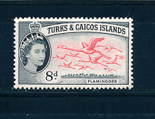 TURKS & CAICOS ISLANDS 1957-60 DEFINITIVES SG245 8d (BIRDS)  MNH