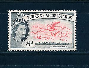 TURKS & CAICOS ISLANDS 1957-60 DEFINITIVES SG245 8d FLAMINGOES  MNH