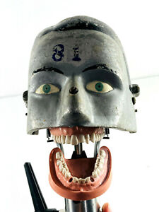 MEGA RARE 1930s AM Manikin Painted Dental Phantom Head 81 vintage