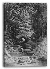 Tela/Cornice Henry Hitchings - Una foresta cascata a Hiram, nel Maine