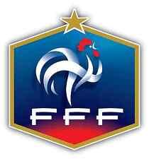 """French Football Federation FFF France Soccer Car Bumper Sticker Decal 4""""X5"""""""