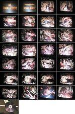 16mm Film-Realfilm-Tierfilm:Die Zauneidechse-Helmut Barth, Kamera um 1979