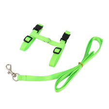 Adjustable Pet Cat Belt Nylon Lead Leash Collar Harness Safety Strap -Green